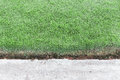 Grass field and concrete floor Royalty Free Stock Photo