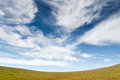Grass field under blue cloudy sky Royalty Free Stock Photo