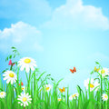 Grass with flower and butterflies vector flat background Royalty Free Stock Photo