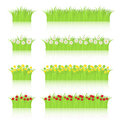 Grass And Flowers Set
