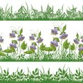 Grass and flowers, set seamless Royalty Free Stock Photo