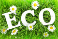 Grass with flowers and white text eco on it Stock Photo