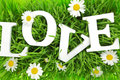 Grass with flowers and white text love on it Stock Images
