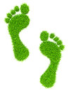 Grass footprints Royalty Free Stock Photo