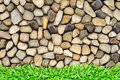 Grass frame rock wall Stock Image