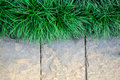 Grass frame  on stone block background Stock Images