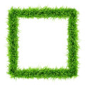 Grass frame top view on white background Royalty Free Stock Photography