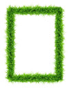 Grass frame top view on white background Royalty Free Stock Photo
