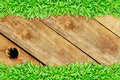 Grass frame  wood hole Royalty Free Stock Image