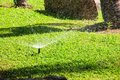 Grass garden spring water in a row Stock Image