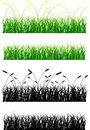 Grass green and silhouette Royalty Free Stock Image