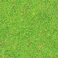 Grass green texture and background Stock Photo