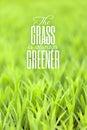 Grass is Always Greener Quote