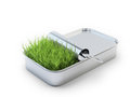 Grass growing out of a tin can an open Royalty Free Stock Images