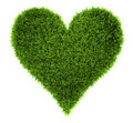 Grass Heart Royalty Free Stock Images