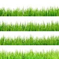 Grass isolated on white eps and also includes vector Royalty Free Stock Image