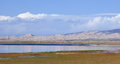 Grass land of Qinghai Lake, China Royalty Free Stock Photo