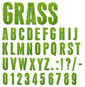 Grass letters Royalty Free Stock Photo