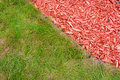 Grass and mulch Stock Photography