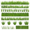 Grass Over White Stock Photos
