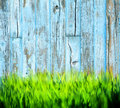 Grass painted wood background a stylized rustic blue fence or wall with growing at its base Royalty Free Stock Photos
