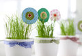 Grass and paper flowers in pots on windowsill Stock Images