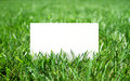 Grass and paper fresh green blank Stock Photography