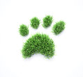 Grass pet paws patches shaped like paw prints Royalty Free Stock Image