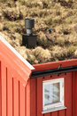Grass on the roof and chimney Royalty Free Stock Photo