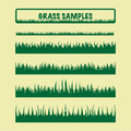 Grass samples, different
