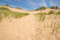 Grass and sand dunes warren state park sawyer michigan Stock Images
