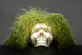 Grass scull like metaphor of danger Stock Image