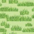 Grass seamless background Stock Photography