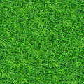 Grass seamless pattern (2 of 2). Royalty Free Stock Photo