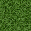 Grass seamless pattern, realistic grass with natural colors Royalty Free Stock Photo