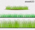 Grass Set, Vector Illustration