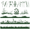 Grass silhouettes of decorative elements of and twigs Royalty Free Stock Photo