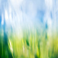 Grass and Sky Abstract Royalty Free Stock Photo