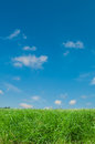Grass and sky green blue Royalty Free Stock Photos