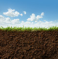 Grass and soil cross section of against blue sky Royalty Free Stock Photography