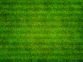 Grass Sports Field Top View Stock Image