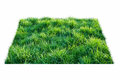 Grass square of green field over white background Stock Photo