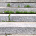 Grass between steps Royalty Free Stock Photo