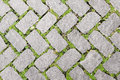 Grass Stone Floor texture pavement design Royalty Free Stock Photo