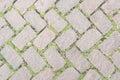 Grass Stone Floor texture pavement design.