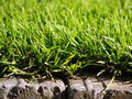 Grass and stones brick Royalty Free Stock Photo