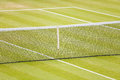 Grass tennis court Royalty Free Stock Photography