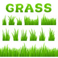 Grass texture design elements set on white background collection of early spring green grass horizontal seamless row Royalty Free Stock Photos