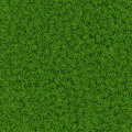 Grass texture green seamless background vector illustration Stock Image