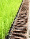 Grass To Drain